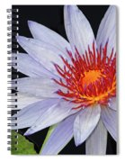 Tropical Waterlily Spiral Notebook