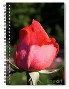 Tropicana Pink  Spiral Notebook