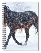 Trotting In The Snow Spiral Notebook