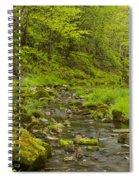 Trout Run Creek 4 Spiral Notebook