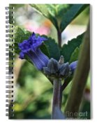 Tube Clematis Spiral Notebook