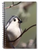 Tufted Titmouse - The Bomb Spiral Notebook
