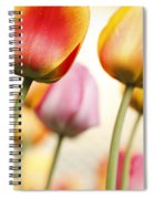 Tulip - Impressions 1 Spiral Notebook