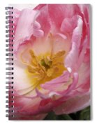 Tulip Angelique Spiral Notebook
