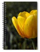 Tulip Drops Spiral Notebook