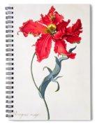 Tulip Perroquet Rouge Spiral Notebook