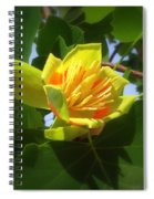 Tulip Poplar Flower Spiral Notebook