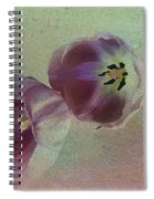 Tulip Reflections Spiral Notebook