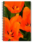 Tulip Trio Spiral Notebook