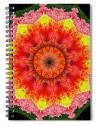 Tulips 3 Spiral Notebook