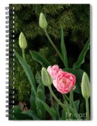 Tulips And Evergreen Spiral Notebook