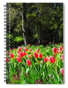 Tulips And Woods Spiral Notebook