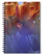 Tulips In Neighbors Garden Spiral Notebook