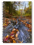 Tumbling Leaves Spiral Notebook