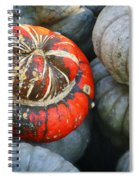 Turban Pumpkin Spiral Notebook