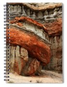 Turks Turban Sacred Earth Spiral Notebook