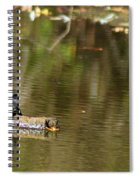 Turtle Climb Spiral Notebook