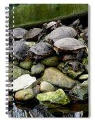 Turtle Island Spiral Notebook