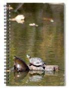 Turtle Print Spiral Notebook