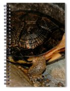 Turtle Time On The Rocks Spiral Notebook