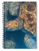 Turtle Underwater,high Angle View Spiral Notebook
