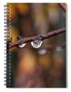 Twig Spiral Notebook