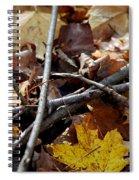 Twiggy  Spiral Notebook