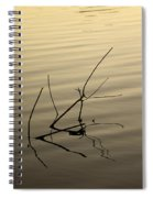 Twigs Breaking The Calm Surface Of The Lake On Sunset Spiral Notebook