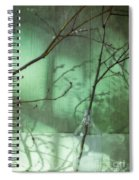 Twigs Shadows And An Empty Beer Jug Spiral Notebook