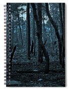 Twilight In The Smouldering Forest Spiral Notebook