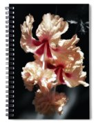 Twin Beauty Hibiscus Spiral Notebook