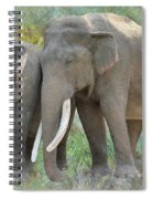 Twin Elephants Spiral Notebook