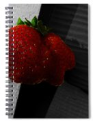 Twin Hearts Spiral Notebook