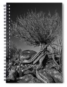 Twisted Beauty - Bw Spiral Notebook