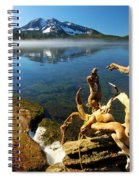 Twisted On The Shore Spiral Notebook