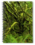 Twisted Rain Forest Spiral Notebook