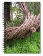 Twisted Tree 1123 Spiral Notebook