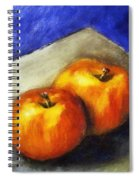 Two Apples With Blue Spiral Notebook
