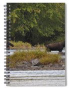 Two Bull Moose In Maine Spiral Notebook