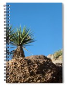 Two Bunch Gold Butte Spiral Notebook