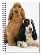 Two Cocker Spaniels Spiral Notebook
