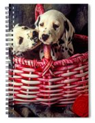 Two Dalmatian Puppies Spiral Notebook