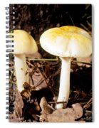 Two Death Cap Mushrooms Spiral Notebook