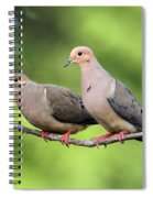 Two Doves Spiral Notebook