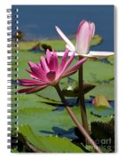 Two Graceful Water Lilies Spiral Notebook