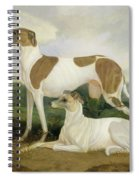 Two Greyhounds In A Landscape Spiral Notebook