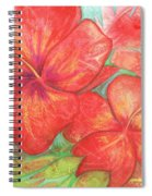 Two Hibiscus Blossoms Spiral Notebook
