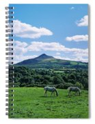 Two Horses Grazing In A Field Spiral Notebook