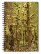 Waltzing In The Rainforest Spiral Notebook
