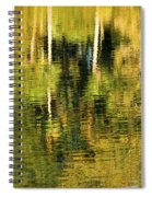 Two Palms Reflected In Water Spiral Notebook